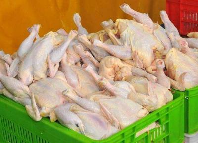 گول مرغ های آبکی را نخورید!