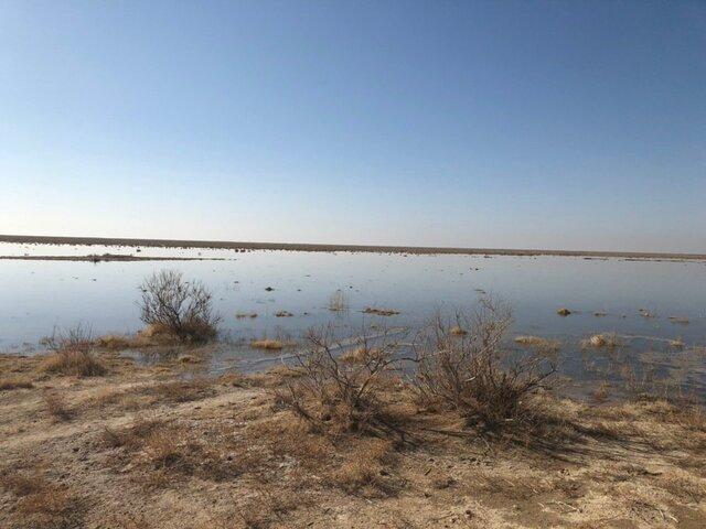 آبگیری 6000 هکتار از تالاب بند علیخان در زمستان سال جاری