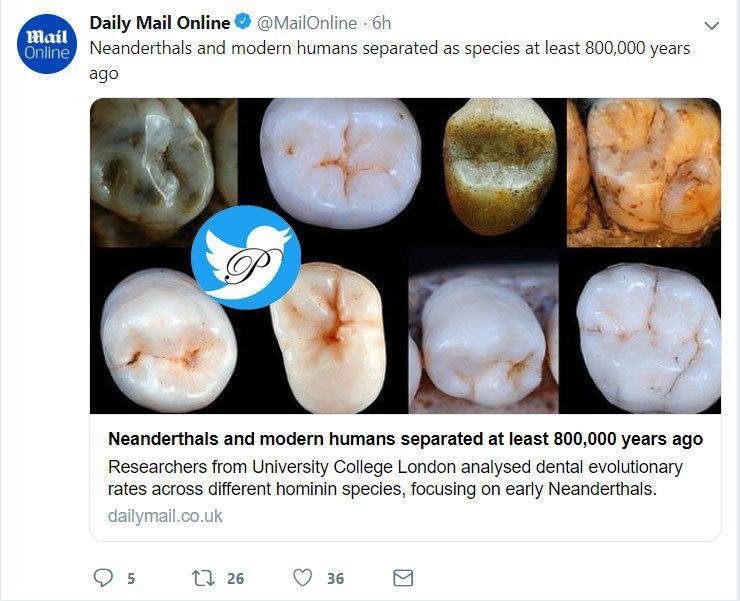 دندان انسان مدرن با انسان نئاندرتال 800 هزار سال پیش متفاوت بوده است
