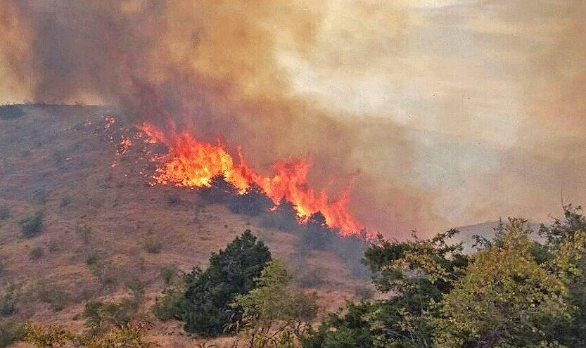 خسارت آتش سوزی در جنگل های ارسباران 100 هکتار تخمین زده شد