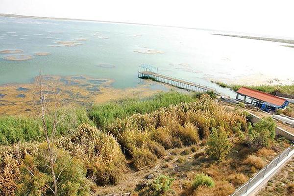 احیای تالاب هامون با استفاده از جریان های سیلابی