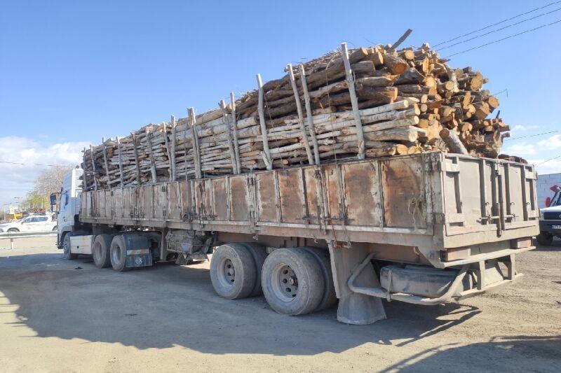 خبرنگاران 70 تُن چوب قاچاق در میاندوآب کشف شد