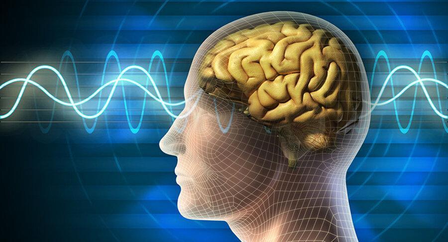 کشف کلید خاموش کردن درد در بدن ، راه حلی برای ساخت داروهای مسکن