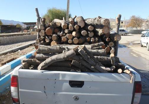 کشف و ضبط 7 تن چوب قاچاق گونه های ممنوع القطع در مهاباد